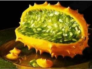 Кивано дыня или огурец, выращивание в домашних условиях, фото и описание фрукта. Как выращивать плод кивано из семян.