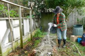 Идеальное удобрение и враг всех вредителей на огороде и в саду!