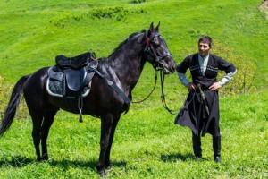 Фото, описание лошади породы Кабардинская, характеристика для домашнего разведения.