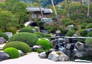 Створення кам'янистого саду своїми руками, дизайн, види та фото.
