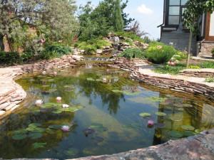 Обустройство дачных и садовых водоемов, описание и фото.