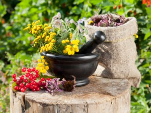 Приготовления лекарств из трав, целебные свойства, заготовки.