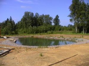 зробити ставок для розведення риби, будівництво ставка для розведення риби на присадибній ділянці