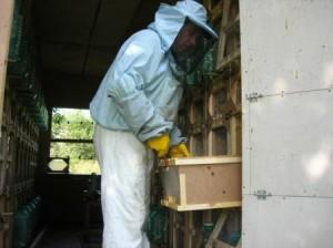 пересувний павільйон для бджіл своїми руками, стаціонарний павільйон для утримання бджіл, конструкція павільйону