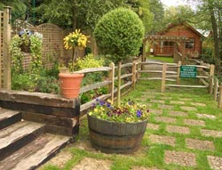 site protection from the wind in the country, how to protect the garden from the gusty winds