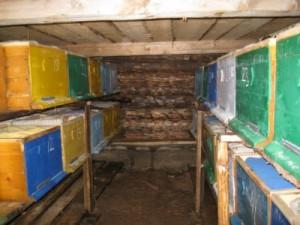 Вентиляция улья при зимовке в помещении зимой. Как сделать вентиляцию в крыше для улья в зимний период, описание и фото.