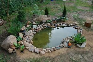 Как сделать маленький пруд на даче во дворе своими руками, фото.